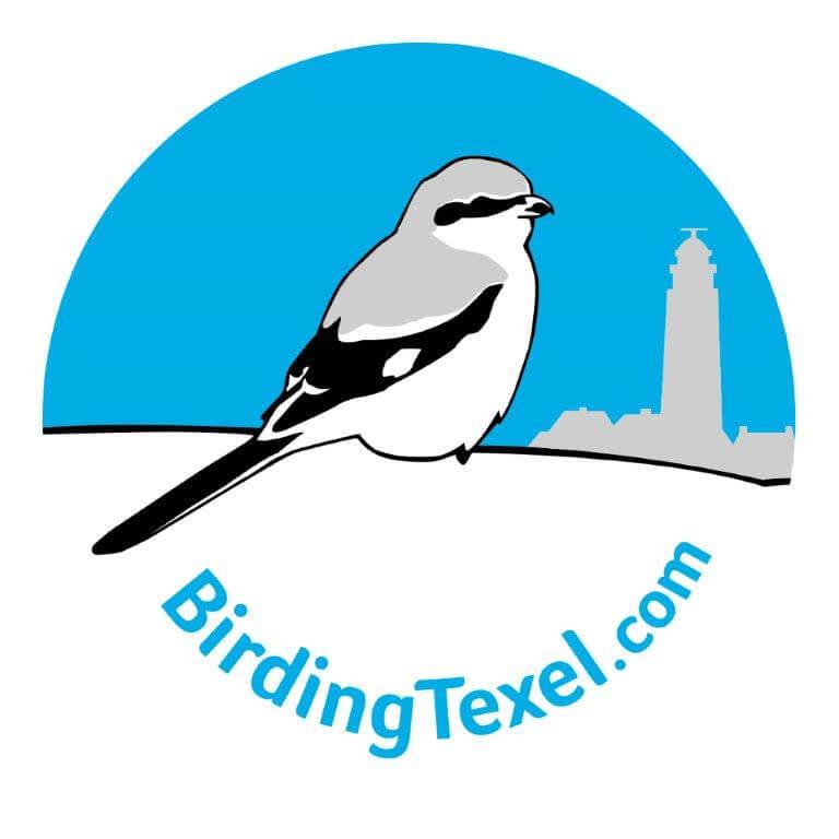 logo birding texel