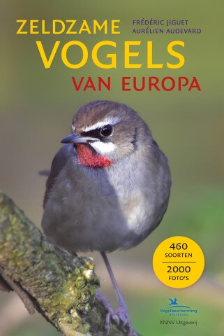 zeldzame vogels van europa Small