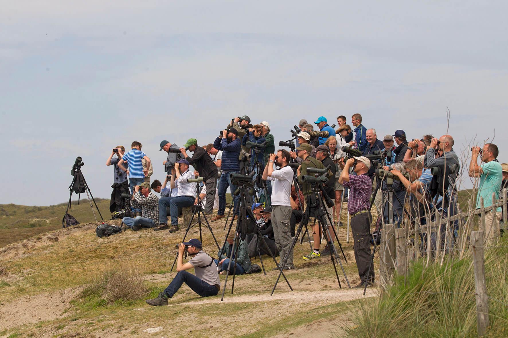Vogelaars bij Renvogelveld Texel Big Day 2018 12mei2018 Harvey van Diek HVD2000 voor pres